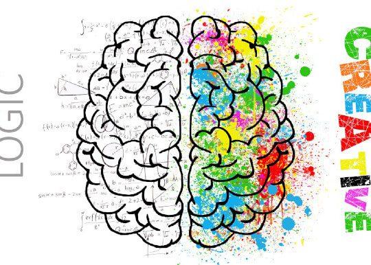 brain 2062055 1920 1