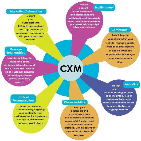 Ideal Marketing Team Structure CXM