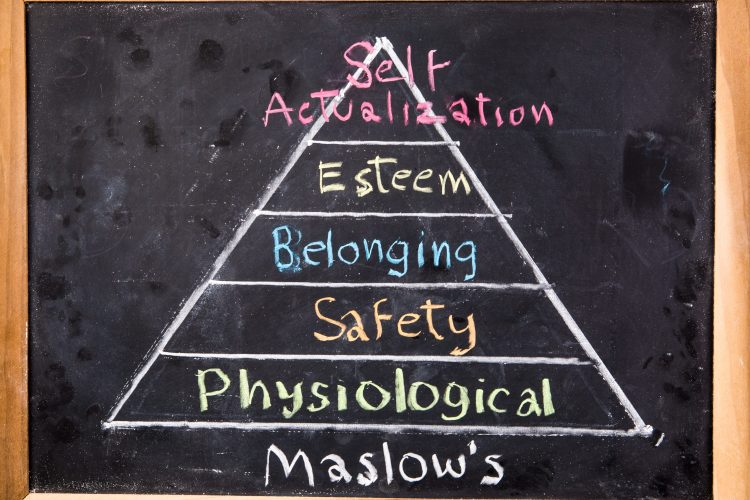 psychology principles